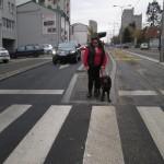 SRAMOTA: Vozač na liniji 25P nije hteo da nastavi vožnju zbog slepe Vesne i njenog psa vodiča!