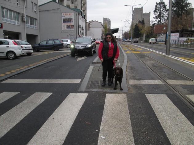 pas vodič petface