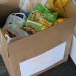 BRAVO, BRAVO: U akciji Petface-a i takmičenja u klizanju sakupljeno 250kg hrane za napuštene!