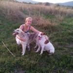 "ANIN APEL: Pomozite nam da nađemo Cmoki, psa sa ""šarenim"" očima!"