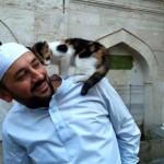 Otvorio džamiju za mačke sa ulica!