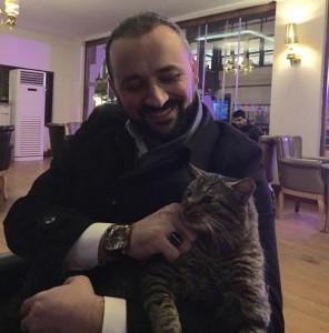 mačke sa ulica petface6