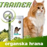 baner trainer mj trade