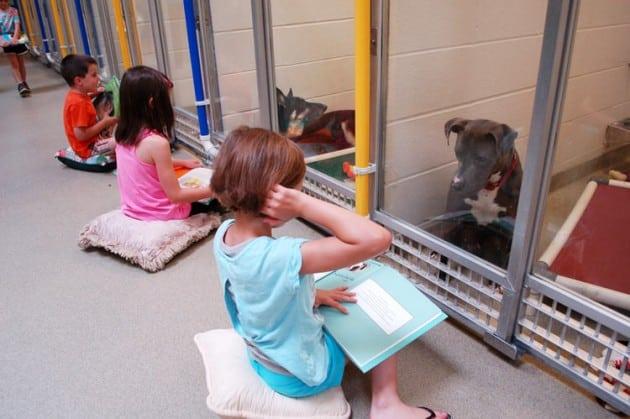 Deca čitaju psima petface