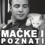 rezervisano za mačke petface
