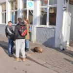 Učenici Ekonomske škole dele užinu sa napuštenim psima!