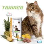 TRAINER: Zadovoljava ukus vaše mačke brinući o njenom zdravlju!