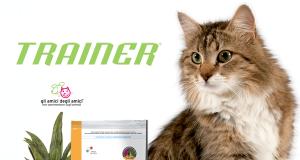 štene trainer mačke petface