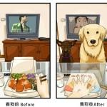 PRE I POSLE: Savršene fotografije koje svedoče o tome šta se sve menja u životu vlasnika kada u njegov dom dođe ljubimac!