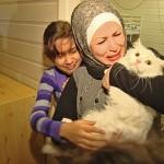 LJUBAV U 28 SEKUNDI: Susret izgubljene mačke i porodice migranata rasplakao svet!