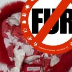 ITALIJA: Trajna zabrana prodaje dečije odeće koja sadrži krzno životinja!