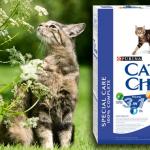 CAT CHOW: Inspirisan prirodom – mačke su ga izabrale!