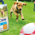 DOG CHOW: Hrana za život pun avantura!