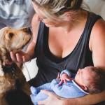 """Dolazak bebe u porodicu NE ZNAČI """"problemi sa ljubimcem u najavi""""! Evo nekoliko saveta!"""