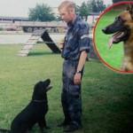 NOVI SAD: Policijski pas Maks uginuo od tuge na dan sahrane svog vodiča!