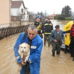 UŽIVO IZ ČAČKA: U poplavama evakuisano preko 400 ljudi, a oni NISU hteli bez psa!