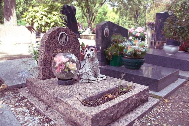 Prvo groblje za kućne ljubimce petface