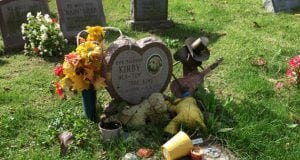 groblje za kućne ljubimce petface
