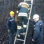 """SUPERHEROJI: Radnici """"Kolubare"""" i vatrogasci spasili zarobljenog psa i dali mu ime Miljan!"""