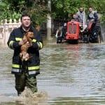 VRLO VAŽNO, PODELITE: Kako da evakuišete ljubimce usled poplava?