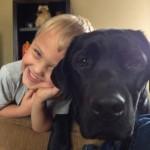 Labrador Jedi svakodnevno spašava život sedmogodišnjem dečaku!