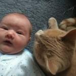 Ovaj mačak se ne odvaja od bebe sa srčanim problemima!