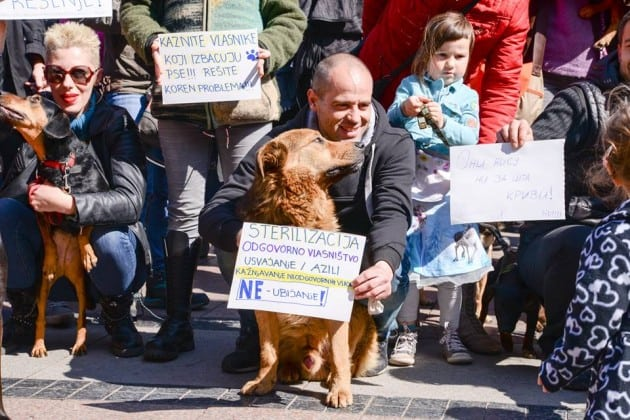 protest petface