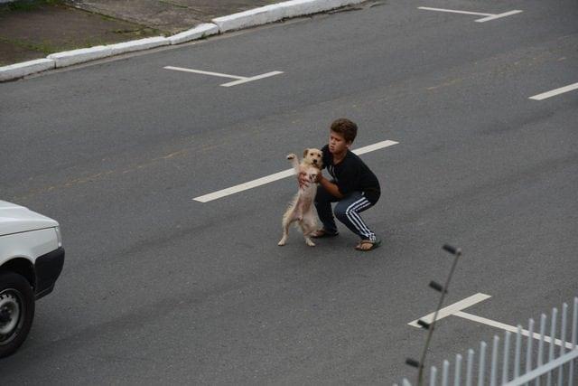 spasio psa petface