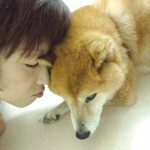 Psi u Japanu svoje poslednje dane mogu provesti u staračkom domu!