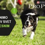 PRO PLAN: Za svaki trenutak u životu psa!