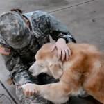 Kako stari bolesni pas postaje razigrano štene pri ponovnom susretu sa vlasnicom! (VIDEO)