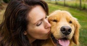 volite svog psa petface