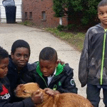 Ova četiri dečaka oslobodila su vezanog psa i pružila mu šansu za novi dom!