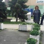Novo trovanje pasa u Bačkoj Palanci – ko je kriv?
