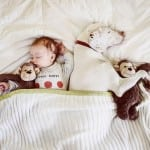 PRESLATKI SU: Pas i beba dele sve – i krevet i plišane igračke!