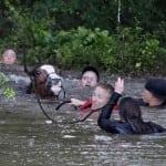 SLIKA KOJA JE OBIŠLA SVET: Spasavanje konja iz poplave!