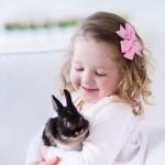 APEL RODITELJIMA: Ne kupujte deci kuniće SAMO ZA Uskrs!