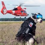 Ovaj pas je zadužen za bezbednost jednog aerodroma!