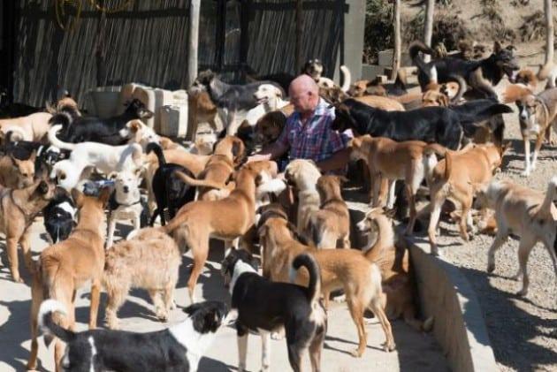 smeštaj za preko 450 životinja petface