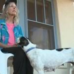 Starica je preživela 9 dana u divljini uz pomoć svog psa!