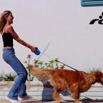 ROGZ SAVETI: Kako da naučite svog psa da ne vuče povodac?!