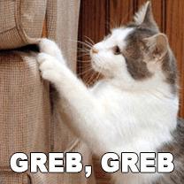 kako sprečiti mačku da grebe nameštaj petface