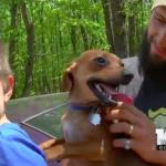 Dečak (3) se izgubio u šumi, a uz njega je 9 sati bez prestanka bio njegov najbolji prijatelj – pas Bendžo!