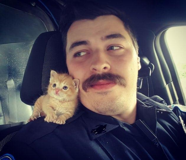 policajac petface