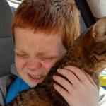 VIDEO: Ponovni susret autističnog dečaka i njegove najbolje prijateljice – MAČKE!