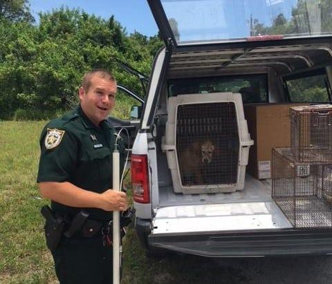 Policajac spasio psa petface