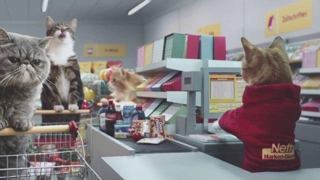 Reklama sa mačkama petface