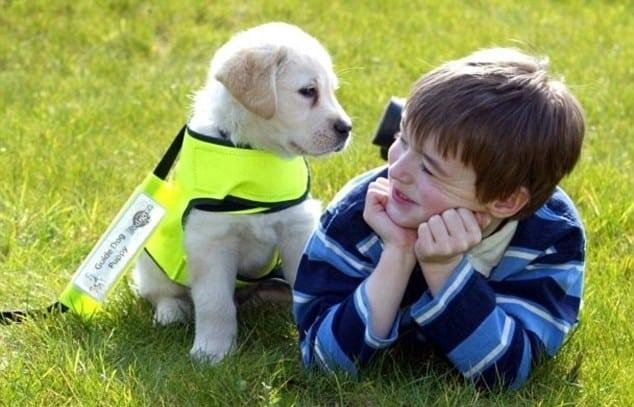 dete sa autizmom petface