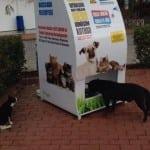 BRAVO: Automat, koji od recikliranih flaša pravi hranu za ulične pse, sada širom sveta!