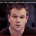 VIDEO: Stop okrutnosti nad životinjama poručuju između ostalih i Met Dejmon i Lejdi Gaga!
